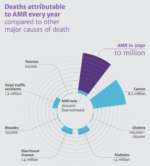antibiotico-resistenza decessi